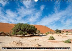 Die Namib (Wandkalender 2019 DIN A3 quer)