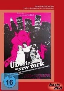 Überleben in New York, 1 DVD