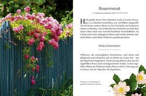 Das große kleine Buch: Mein Garten im Sommer