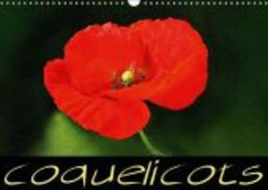 Coquelicots (Calendrier mural 2015 DIN A3 horizontal)