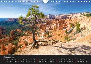 Traumlandschaften im Westen der USA (Wandkalender 2019 DIN A4 qu