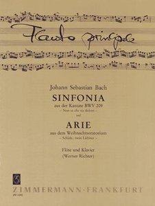 Sinfonia aus der Kantate BWV 209