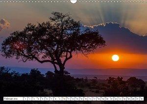 Emotionale Momente: Mein wildes Afrika / CH-Version (Wandkalende