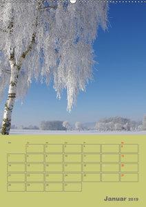 Naturbilder (Wandkalender 2019 DIN A2 hoch)