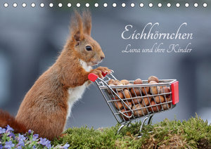 Eichhörnchen Luna und ihre Kinder (Tischkalender 2018 DIN A5 que