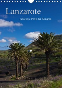 Lanzarote (Wandkalender 2016 DIN A4 hoch)