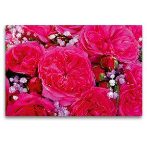 Premium Textil-Leinwand 120 cm x 80 cm quer Rosenstrauss in pink