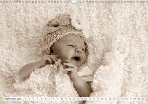 Babys - Willkommen im Leben