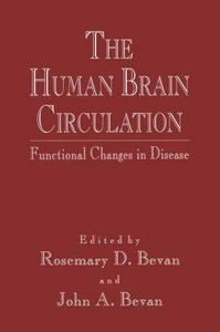 The Human Brain Circulation