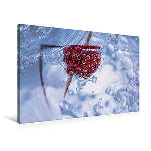 Premium Textil-Leinwand 90 cm x 60 cm quer Himbeere im Wassergla