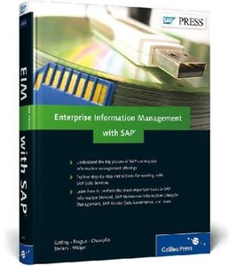 Enterprise Information Management with SAP