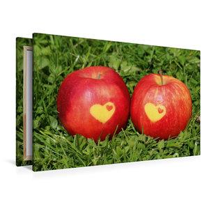 Premium Textil-Leinwand 120 cm x 80 cm quer Äpfel mit Herz