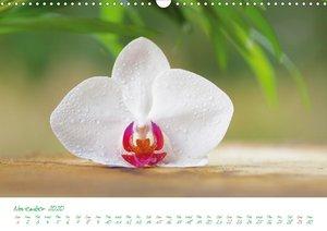 Spa for the Soul (Wall Calendar 2020 DIN A3 Landscape)