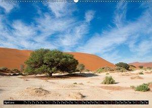 Die Namib (Wandkalender 2019 DIN A2 quer)