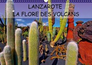 LANZAROTE LA FLORE DES VOLCANS (Calendrier mural 2015 DIN A3 hor