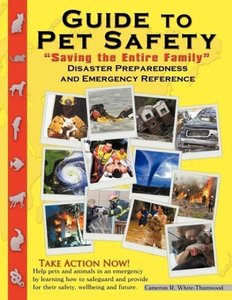 Guide to Pet Safety