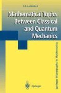 Mathematical Topics Between Classical and Quantum Mechanics