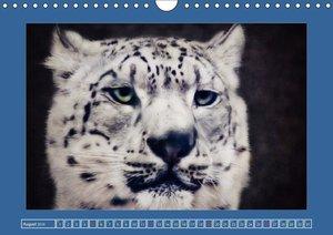 Die schönsten Tierportraits der besonderen Art