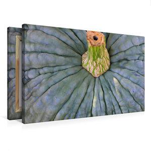 Premium Textil-Leinwand 75 cm x 50 cm quer Kürbis