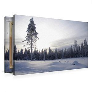 Premium Textil-Leinwand 75 cm x 50 cm quer Nadelwald im verschne