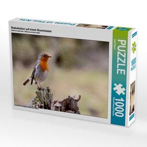 Rotkehlchen auf einem Baumstamm 1000 Teile Puzzle quer
