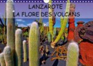 LANZAROTE LA FLORE DES VOLCANS (Calendrier mural 2015 DIN A4 hor