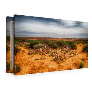 Premium Textil-Leinwand 90 cm x 60 cm quer Im Escalante National