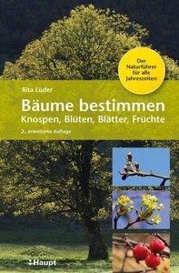 Bäume bestimmen - Knospen, Blüten, Blätter, Früchte