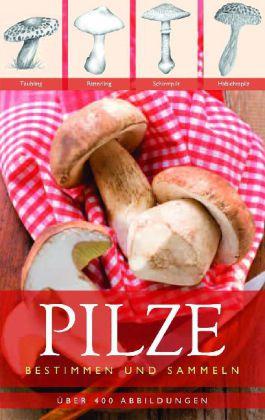 Pilze - zum Schließen ins Bild klicken