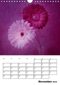 Floral mit Charme (Wandkalender 2019 DIN A4 hoch)