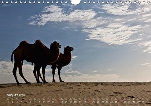 Unterwegs in der Taklamakan Wüste (Wandkalender 2018 DIN A4 quer