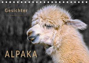 Alpaka Gesichter