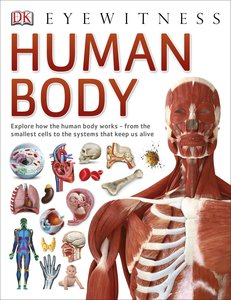 DK Find Out!: Human Body