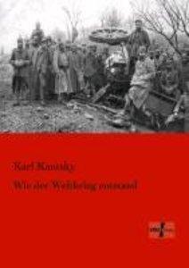 Wie der Weltkrieg entstand