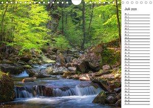 Landschaften im Harz (Wandkalender 2020 DIN A4 quer)