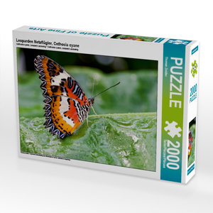 Leoparden Netzflügler, Cethosia cyane 2000 Teile Puzzle quer