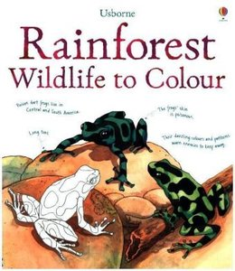 Rainforest Wildlife to Colour