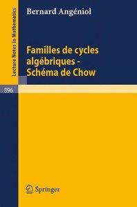 Familles de Cycles Algebriques - Schema de Chow