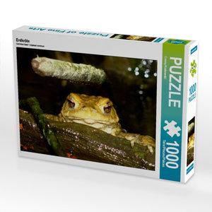 Erdkröte 1000 Teile Puzzle quer