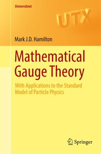 Mathematical Gauge Theory
