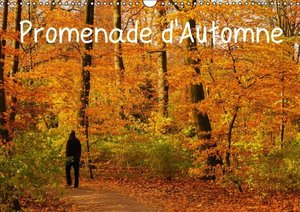 Angot, M: Promenade D'automne