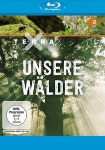 Terra X: Unsere Wälder