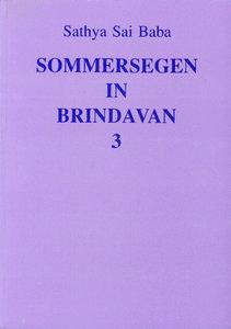 Sommersegen in Brindavan 3