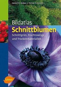 Bildatlas Schnittblumen