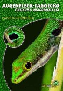 Der Augenfleck-Taggecko