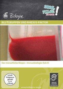 Blutgruppen und Rhesus-Faktor