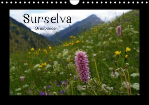 Surselva - Graubünden (Wandkalender immerwährend DIN A4 quer)