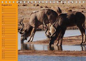 Botswanas Tiervielfalt