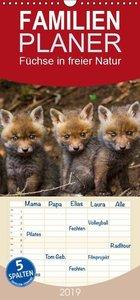 Füchse in freier Natur - Familienplaner hoch