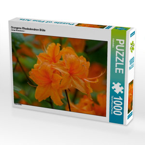 Orangene Rhododendron Blüte 1000 Teile Puzzle quer